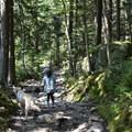 Way down- Mount Kearsarge