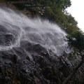View of the falls- Teneriffe Falls