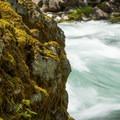 Clackamas River- Clackamas River Trail