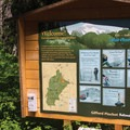 Indian Heaven Trailhead sign- Cultus Creek to Lemei Rock