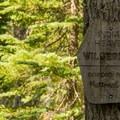 Indian Heaven Wilderness trail sign- Cultus Creek to Lemei Rock