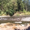 good spot for a dip- Wilson River + Tillamook Forestry Center