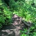 steps and paths easy to folllow - Mount Peak (Pinnacle Peak)