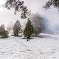 White out condition is pretty common to happen during winter- Mount Baldy Bowl via Ski Hut Trail