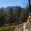 River Trail Hike, South Fork of the Kings River
