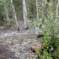 Water rushing across boardwalk- Convict Lake Loop Trail