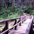 Bridge below falls- Silver Falls and Hot Springs Loop Trail
