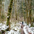 snow and muddy trails- Abiqua Falls