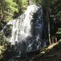 Ramona Falls- Muddy Fork