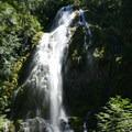 Proxy Falls Hiking Loop