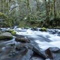 Creek bed below Bridal Veil Falls.- Bridal Veil Falls, Oregon