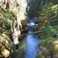 Silver Falls and Hot Springs Loop Trail
