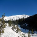 View from just outside the trees- Mount St. Helens Worm Flows Backcountry Ski