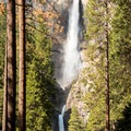 Upper and Lower Yosemite Falls in a season of high flow.- Lower Yosemite Falls