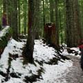 Enough snow along the trail to make for a fun trip.- Mirror Lake