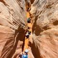 Little Wildhorse Canyon Hike