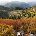 Huckleberry heaven- Mount Margaret via Norway Pass