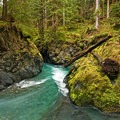 Quinault River- Enchanted Valley Trail to Pony Bridge