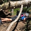 A little tricky with a baby :) - High Rock Lookout Tower Hike