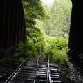 Tunnel 26 (Not certain...?)- Upper Salmonberry River Trail