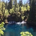 McKenzie River Trail: Carmen Reservoir to Tamolitch Pool