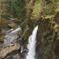 Drift Creek Falls Hike