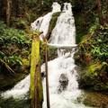 Horseshoe Creek Falls- Siouxon Creek Hike