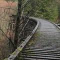 Tophill Trestle, Banks Vernonia State Trail- Banks-Vernonia Trail