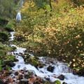 Wahkeena Falls/Multnomah Falls Loop Hike