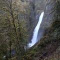 Clackamas + Memaloose Falls