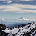 View to Mount Hood from Lunch Counter- Mount Adams, South Climb