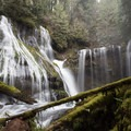 Panther Creek Falls in January- Panther Creek Falls