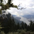 View from a Munra Point lookout to the Columbia River- Munra Point Hike