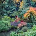 Portland Japanese Garden- Portland Japanese Garden