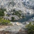 Mountain goat and baby at Robin Lake- Tuck + Robin Lakes