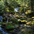 A small waterfall to the side of the trail- Lena Lake Hike