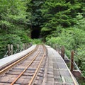 Wolf Creek Trestle, into the mountain...- Upper Salmonberry River Trail
