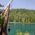 Rope swing at the Lower Twin Lake- Twin Lakes
