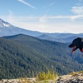 Mt. Hood with Mt. Jefferson visible in the distance.- Chinidere Mountain + Wahtum Lake Hike