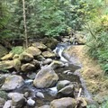 The creek- Wahkeena Falls/Multnomah Falls Loop Hike