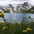 Ice Lake and wildflowers. - Ice Lake + Island Lake Hike