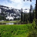 Gibson Meadow-- a wetland- Granite Lake + Seven Up Pass