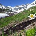 Looking toward Seven Up Pass (impassable)- Granite Lake + Seven Up Pass