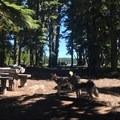 Breitenbush Lake Campground