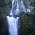 Falls Creek Falls- Falls Creek Falls