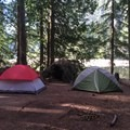 Third campsite in once you reach the lake, just off the trail. - Barclay Lake