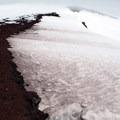 Crevasse on Lewis Glacier- South Sister Hike
