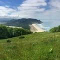 Cascade Head Hike
