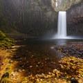 Late autumn leaves fill the pool.- Abiqua Falls