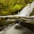 Water falls gently from the gradual slide to subtle cascades.- Alsea Falls Recreation Area